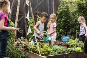 Méthode Montessori - Potager enfants