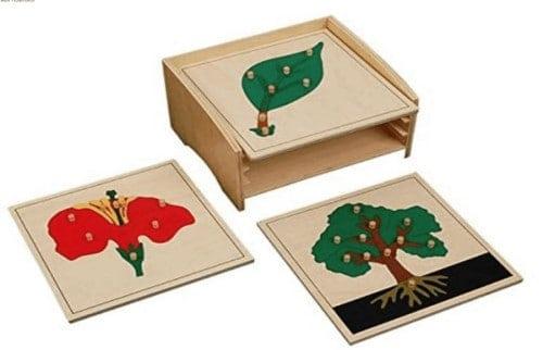 Montessori-Store Cabinet Complet de 3 Puzzles botanique Haut de Gamme