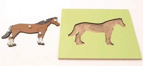 Montessori-Store Puzzle Squelette de Cheval